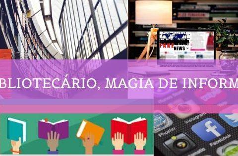 Bibliotecário (a), magia de informar